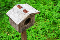 Small bird house Stock Image