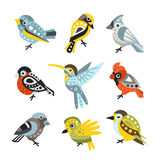 Small Bird Species, Sparrows And Hummingbirds Set Of Decorative Artistic Design Wild Animals Vector Illustrations Royalty Free Stock Photos