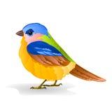 Small bird titmouse vector Stock Photo