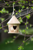 Small Birdhouse In Tree. Cute small wooden birdhouse outdoors in backyard hanging from tree Royalty Free Stock Image