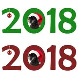 Small black dog Miniature Schnauzer in Santa`s hat looks out t Royalty Free Stock Photo
