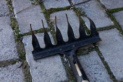Small black garden rake on gray tile royalty free stock photo