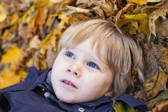 Small blond boy with blue eyes lays on bed of autumn fallen leav Royalty Free Stock Photo