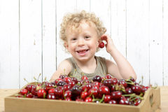 A small blond boy eating cherries Stock Photos