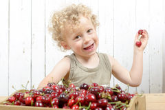 A small blond boy eating cherries Royalty Free Stock Images