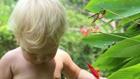Child Learns Flower stock footage