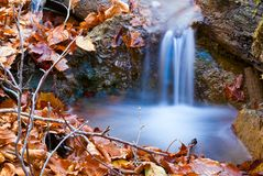 Small blue brook Royalty Free Stock Images