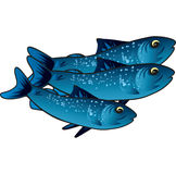 Small blue fish Stock Photos