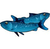 Small blue fish Stock Images