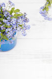 Small blue flowers in a jar Stock Image