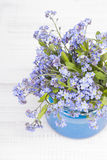 Small blue flowers in a jar Royalty Free Stock Image
