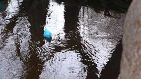 Small blue paper boat flowing with a stream of transparent river, reflected in it of trees. Small blue paper boat flowing with stream of transparent river stock video