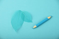 Small blue pencil and skeleton leaves. Small blue pencil and two teal skeleton leaves over design paper background stock photo