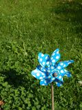Small blue vane with white dots. In green garden on a grass royalty free stock photography