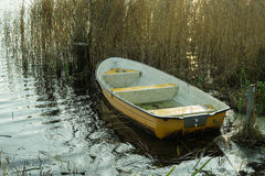 Small boat in a lake in the fall Stock Images