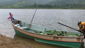 Small boat with local tropical vegetables stock footage