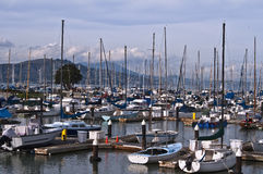 Small Boat Marina, San Francisco  Stock Photo