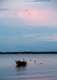 Small boat in the sea at evening near Middelfart, Denmark. A small boat in the sea at evening near Middelfart, Denmark surrounded by seagulls. The blue and pink royalty free stock images