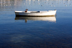 Small boat and seagulls Stock Photography