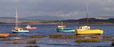 Small boats and birds on shoreline, Morecambe Bay Stock Images