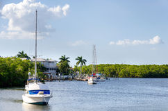Small boats in the small palm bay Stock Photography
