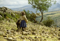 Young Bolivian girl in a remote region of the Altiplano Stock Photos