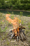 Small bonfire. On the shore of a mountain lake Royalty Free Stock Photography