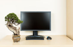 Small bonsai tree on plain office desk with monitor Royalty Free Stock Photos