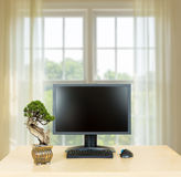 Small bonsai tree on plain office desk with monitor Stock Photography