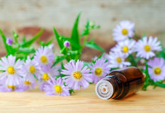 Small bottle of essential aroma oil herbal extract, tincture, infusion, copy space Stock Images