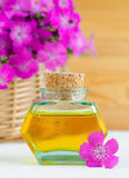 Small bottle of natural aroma oil. Spa, massage and aromatherapy. Royalty Free Stock Image