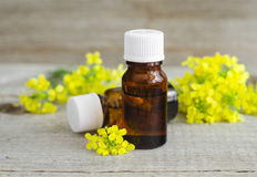 Small bottles of natural essential oil herbal or flowers extract, tincture, perfume Stock Photo