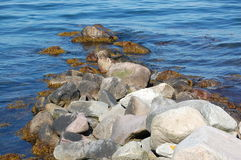 Small boulder pier Royalty Free Stock Photography