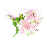 Small bouquet of Alstroemeria flowers Stock Photo