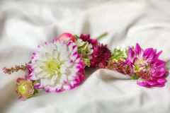 Small bouquet Royalty Free Stock Image