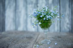 A small bouquet of forget-me-nots in a crystal glass on a blurred background of boards painted with blue paint and a few flowers o. F forget-me-nots lie at the royalty free stock photography
