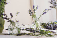 Small bouquet of fresh lavender in jars with water Royalty Free Stock Images