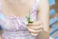 Small bouquet in hand Stock Photography