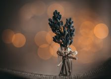 A small bouquet of lavender flowers on a brown background with Golden yellow bokeh light close up. Bunch of lavender in a tiny. A small bouquet of lavender royalty free stock images