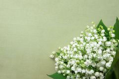Small Bouquet of Lily of the Valley Flowers with Green Leaves on Beige Vintage Background. Wedding Birthday Mother`s Women`s Day. Greeting Card. Poster
