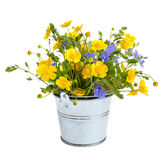 Small bouquet with meadow flowers Royalty Free Stock Photography