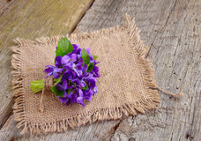 Small bouquet with meadow violets Stock Image