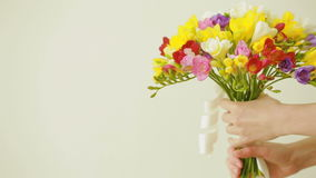 Small bouquet of multicolored freesias in female hands stock footage