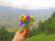 Small bouquet of summer flowers in hand. space for text. Green background of grass and mountains Stock Photo