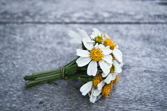 A small bouquet of white daisies on a wooden floor. Royalty Free Stock Photos