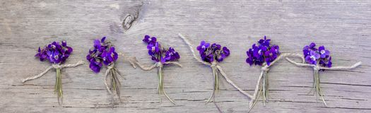 Small bouquets of fragrant forest flowers of violets. Tied with twine are laid out in a horizontal row Stock Photos