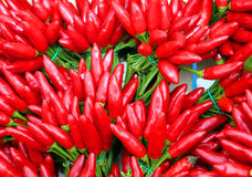 Small bouquets of red hot chillies on sale at the greengrocer Stock Image