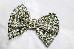Small bow tie Royalty Free Stock Photography