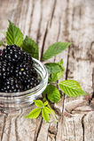 Small bowl with Blackberries Stock Photos