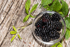 Small bowl with Blackberries Royalty Free Stock Image